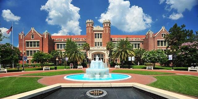 Top 10 trường đại học cung cấp khóa học trực tuyến hàng đầu nước Mỹ - 3