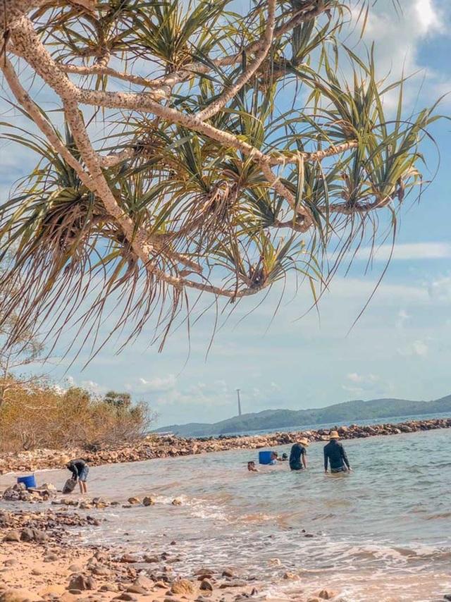 14 ngày trăng mật trên đảo hoang sơ của cặp vợ chồng Hà Tĩnh - 2