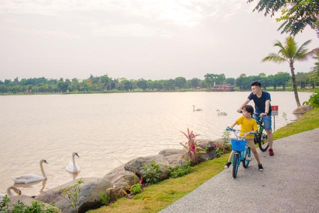 Khu đô thị tại Việt Nam có thiên nga, vịt trời đi lại tự nhiên trên đường như châu Âu - 7