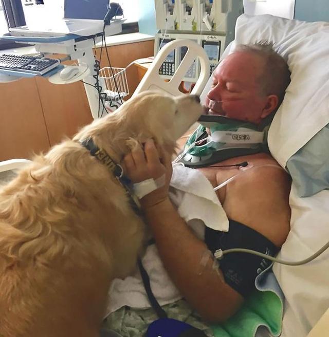 Cảm động tình yêu vô điều kiện của cún cưng dành cho chủ - 4