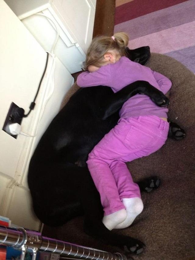 Cảm động tình yêu vô điều kiện của cún cưng dành cho chủ - 6