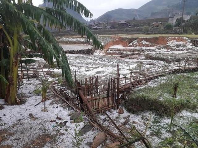 Thủ tướng chỉ đạo ứng phó, khắc phục hậu quả giông lốc, mưa đá - 1