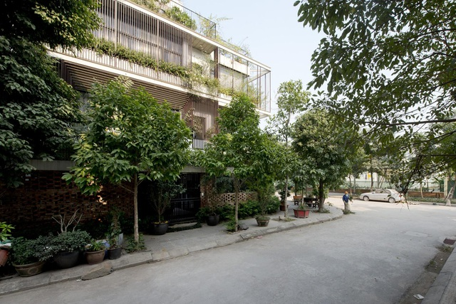 Hà Nội: Biệt thự 3 tầng phủ kín cây xanh đẹp lạ giữa lòng phố cổ - 2