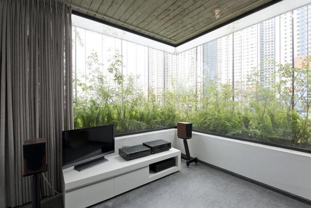 Hà Nội: Biệt thự 3 tầng phủ kín cây xanh đẹp lạ giữa lòng phố cổ - 6