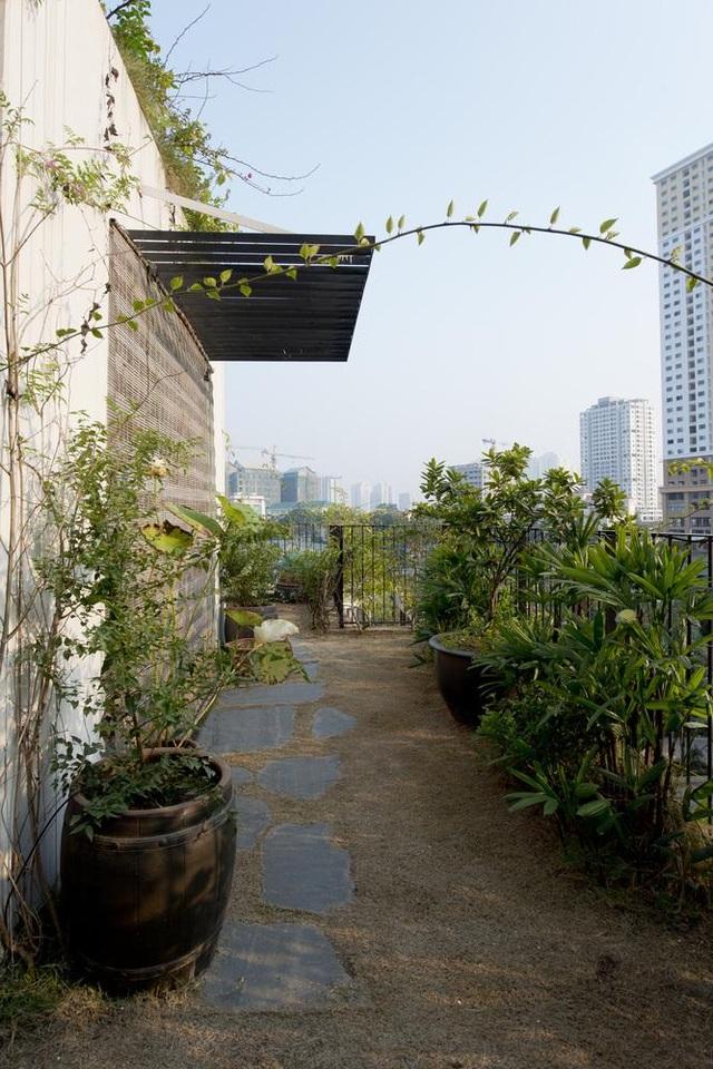 Hà Nội: Biệt thự 3 tầng phủ kín cây xanh đẹp lạ giữa lòng phố cổ - 11