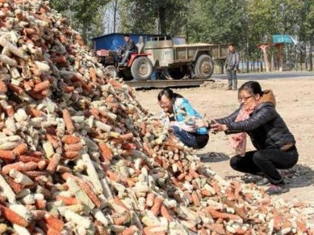 Lõi ngô là thứ vứt đi ở Việt Nam, nay thành mỏ tiền không đủ bán - 9