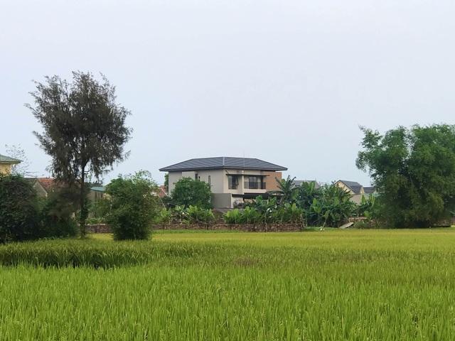 Biệt thự con trai xây tặng bố mẹ đẹp lạ giữa cánh đồng lúa chín ở Hà Tĩnh - 16