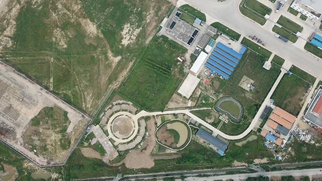 Doanh nghiệp Trung Quốc xây vườn hoa giống hình đường lưỡi bò - 2