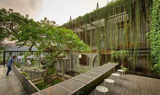 Ngôi nhà phủ kín cây xanh như bước ra từ câu chuyện cổ tích - 2