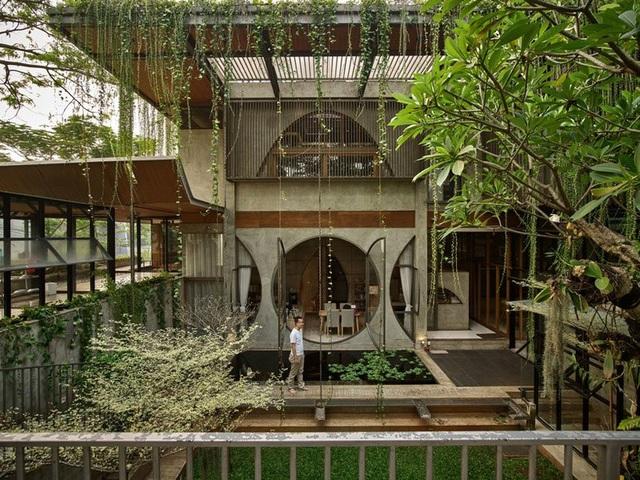 Ngôi nhà phủ kín cây xanh như bước ra từ câu chuyện cổ tích - 3