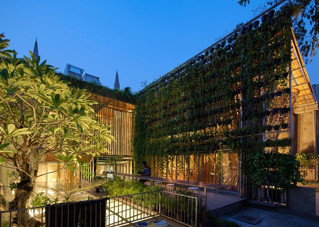 Ngôi nhà phủ kín cây xanh như bước ra từ câu chuyện cổ tích - 5