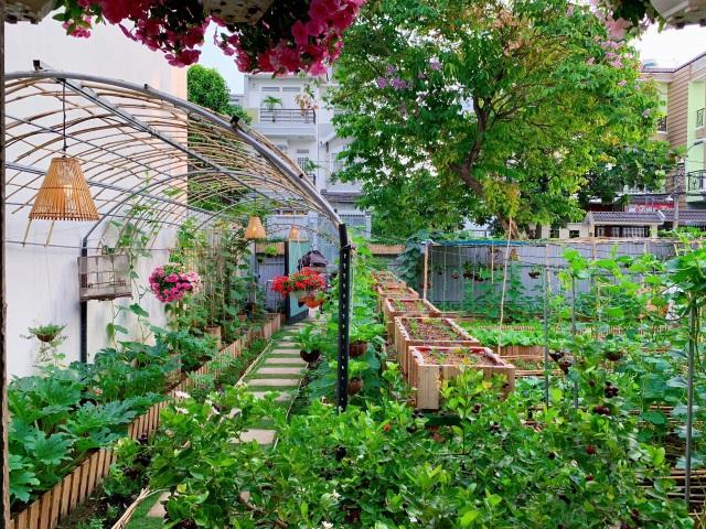 Bỏ 50 triệu đồng cải tạo vườn chuối thành khu sinh thái trong mơ - 2