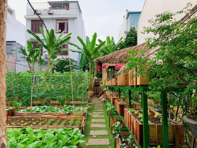 Bỏ 50 triệu đồng cải tạo vườn chuối thành khu sinh thái trong mơ - 1