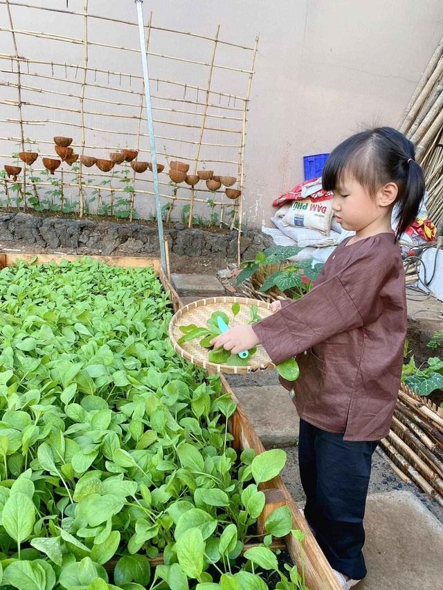 Bỏ 50 triệu đồng cải tạo vườn chuối thành khu sinh thái trong mơ - 12
