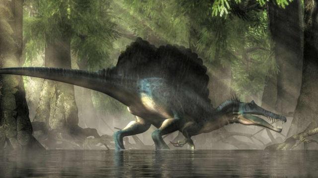 Phát hiện hóa thạch loài khủng long biết bơi đầu tiên trên Trái đất - 1
