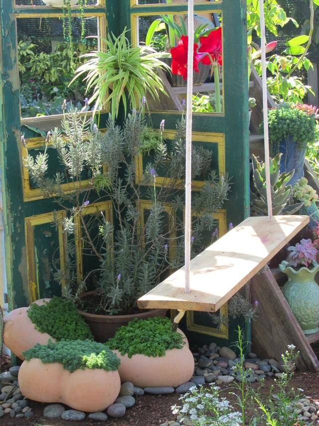 Độc đáo khu vườn ve chai của chị gái Lâm Đồng - 12
