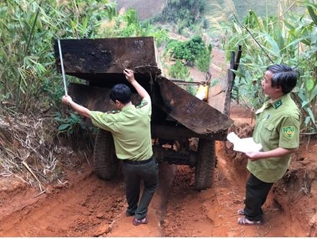 Bộ Nông nghiệp làm việc khẩn với tỉnh Kon Tum về nạn tàn phá rừng xanh! - 1