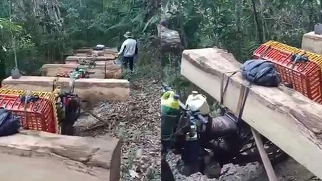 Bộ Nông nghiệp làm việc khẩn với tỉnh Kon Tum về nạn tàn phá rừng xanh! - 2