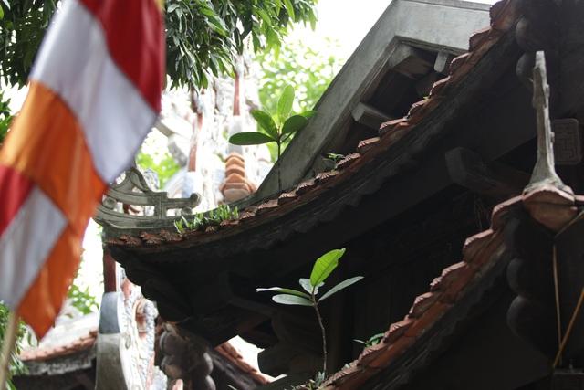 Chiêm ngưỡng ngôi chùa cổ kính nghìn năm tuổi ở Hà Nội - 9