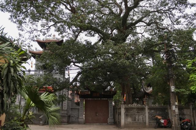 Chiêm ngưỡng ngôi chùa cổ kính nghìn năm tuổi ở Hà Nội - 15