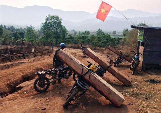 Bộ Nông nghiệp làm việc khẩn với tỉnh Kon Tum về nạn tàn phá rừng xanh! - 3