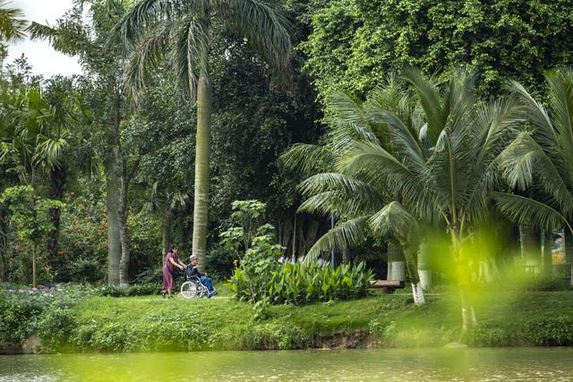 Check-in cánh đồng cỏ tranh đẹp nên thơ ngay phía Đông Hà Nội - 8