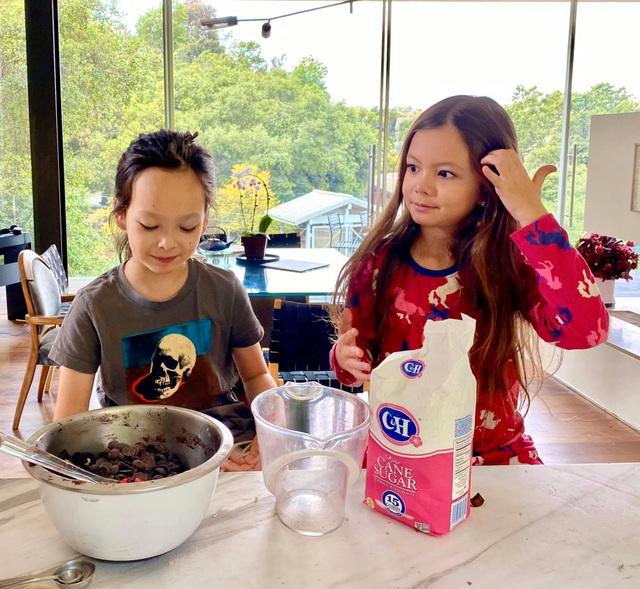 Cuộc sống bình yên của Diva Hồng Nhung cùng cặp song sinh tại biệt thự ở Mỹ - 9