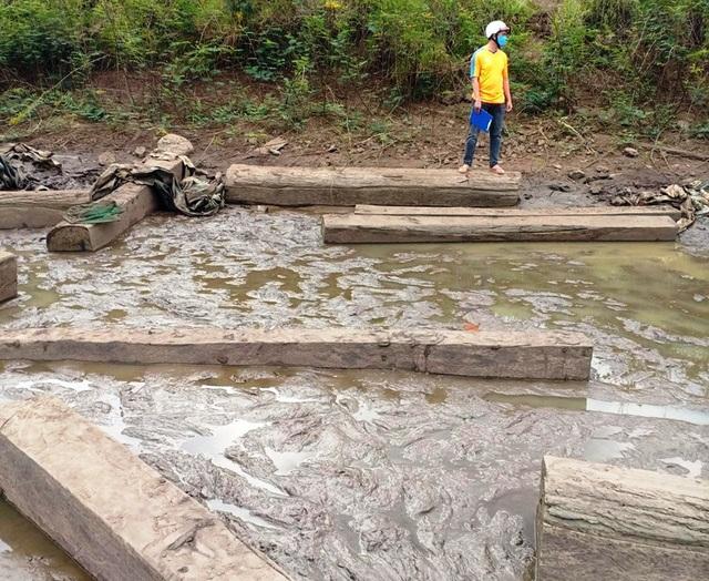 Hồ cạn nước, bất ngờ lộ ra hàng chục hộp gỗ lậu - 2