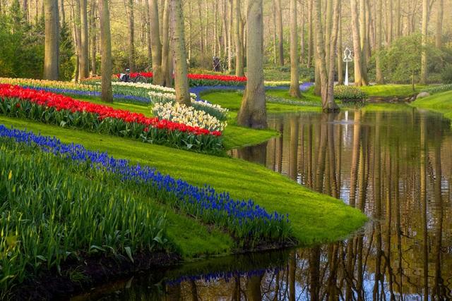 Mãn nhãn với vườn hoa đẹp nhất thế giới - 9