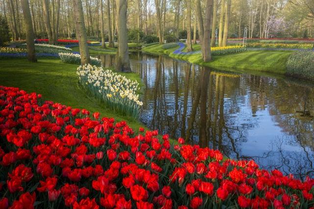 Mãn nhãn với vườn hoa đẹp nhất thế giới - 11