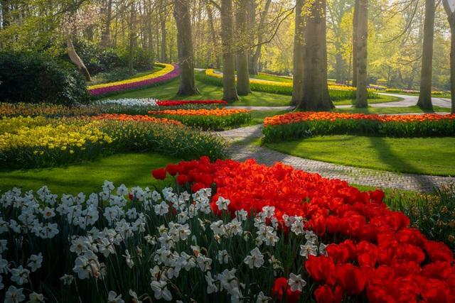 Mãn nhãn với vườn hoa đẹp nhất thế giới - 13