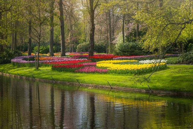 Mãn nhãn với vườn hoa đẹp nhất thế giới - 16