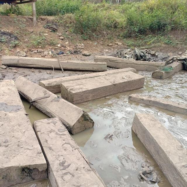 Hồ cạn nước, bất ngờ lộ ra hàng chục hộp gỗ lậu - 1