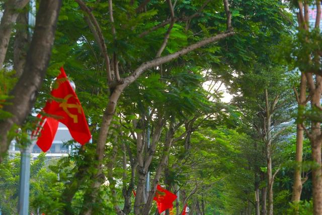 Người Hà Nội thích thú với đường đi bộ rợp cây xanh lãng mạn như phim Hàn - 2