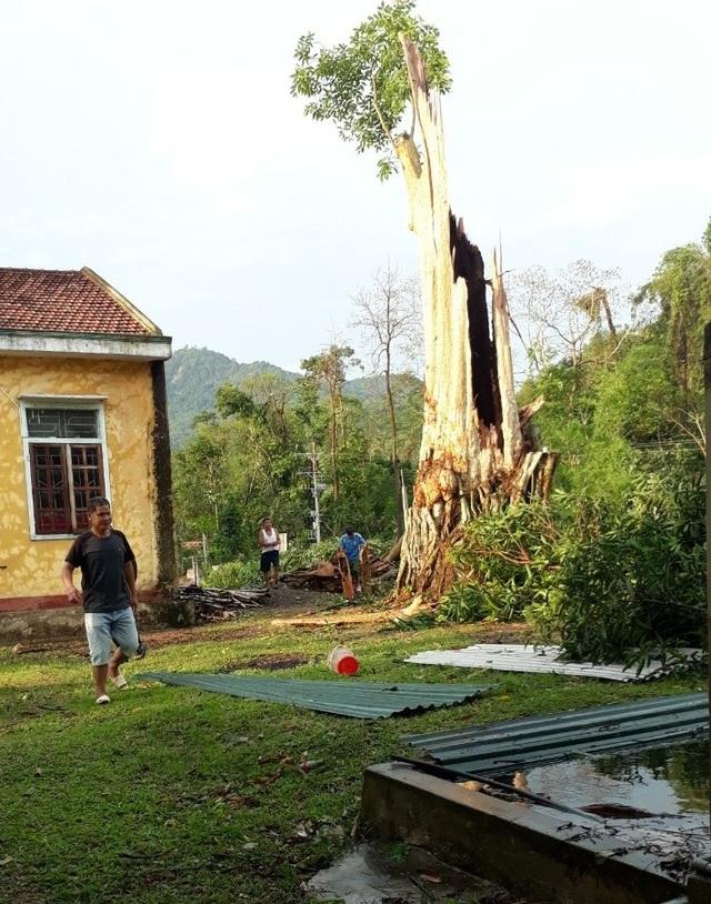 Cận cảnh trận lốc xoáy càn quét bản làng xứ Nghệ - 9