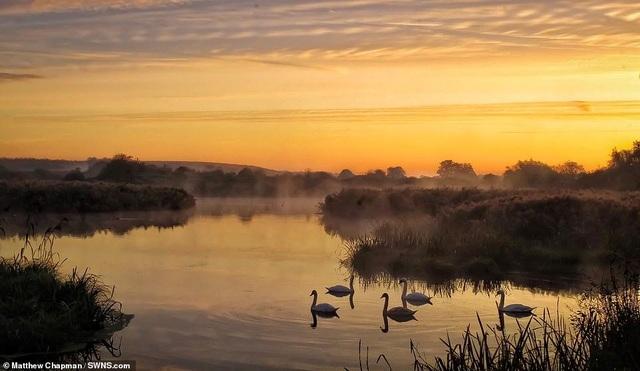 Mãn nhãn với những bức ảnh đẹp nhất về thiên nhiên hoang dã - 12