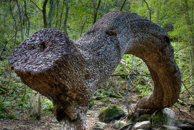 Thân cây được nhét kín tiền, người dân quan niệm ai lấy cắp sẽ mắc bệnh - 2