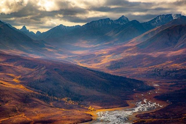 Chiêm ngưỡng tuyệt tác thiên nhiên hoang dã tại cuộc thi ảnh quốc tế - 12