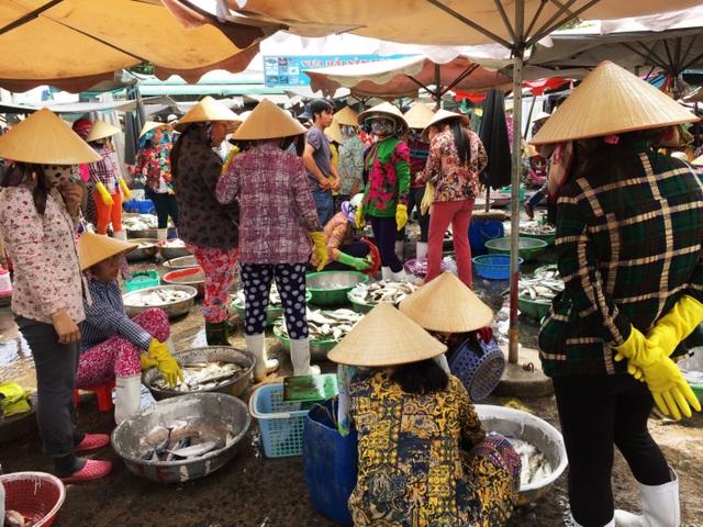 Nhộn nhịp chợ cá Phước Hải - Bà Rịa - 1