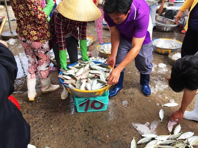Nhộn nhịp chợ cá Phước Hải - Bà Rịa - 6
