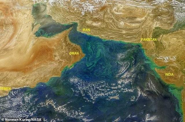 Tuyết tan ở đỉnh dãy Himalayas khiến nở rộ tảo xanh phát sáng độc hại - 1
