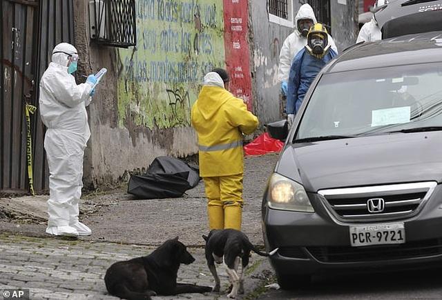 Hơn 1.600 người chết vì Covid-19, thi thể nằm ngay trên đường phố Ecuador - 8