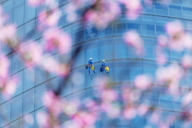 Khoảnh khắc đẹp nhất mùa xuân năm 2020 gọi tên nhiếp ảnh gia Việt Nam - 10