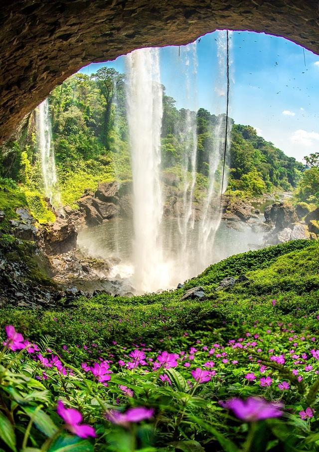Khoảnh khắc đẹp nhất mùa xuân năm 2020 gọi tên nhiếp ảnh gia Việt Nam - 11