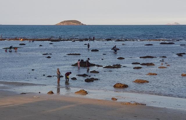 Bãi biển Nha Trang nhộn nhịp mùa nước cạn, phát lộ nhiều bãi đá - 3