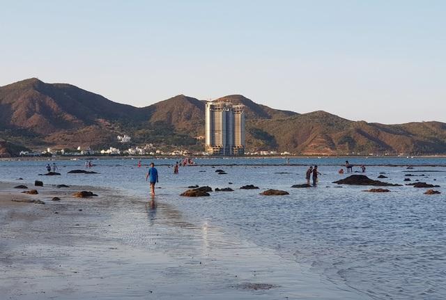 Bãi biển Nha Trang nhộn nhịp mùa nước cạn, phát lộ nhiều bãi đá - 7