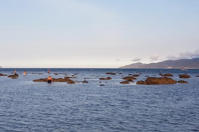 Bãi biển Nha Trang nhộn nhịp mùa nước cạn, phát lộ nhiều bãi đá - 9