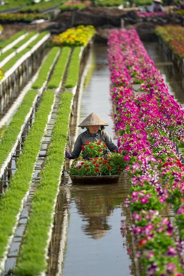 Khoảnh khắc đẹp nhất mùa xuân năm 2020 gọi tên nhiếp ảnh gia Việt Nam - 6