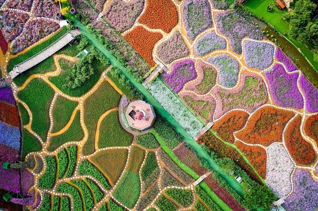 Khoảnh khắc đẹp nhất mùa xuân năm 2020 gọi tên nhiếp ảnh gia Việt Nam - 7