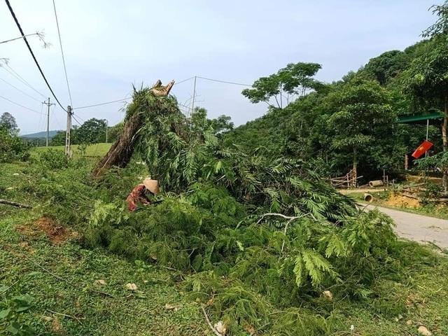9 xã vùng biên thiệt nặng nề do lốc xoáy và mưa đá - 6